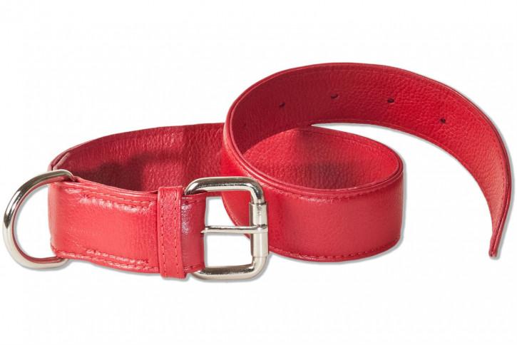 Rimbaldi® Voll-Leder Hundehalsband für mittelgroße Hunde mit 45-55 cm Halsumfang in Weinrot